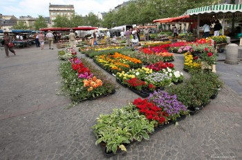 Luxembourg City market